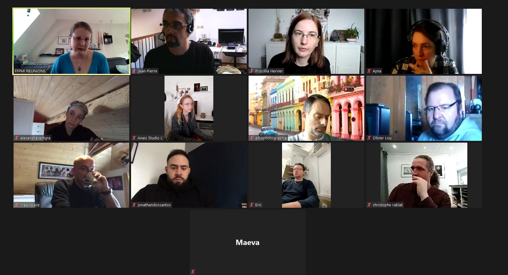 Capture d'écran de notre réunion virtuelle