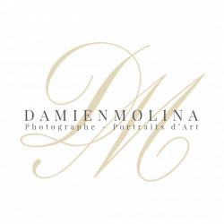 Damien Molina Les Portraits d'Art